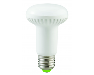 LED lemputė ACME R63 8W, E27
