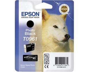 Rašalo kasetė Epson T096 Photo Black Epson