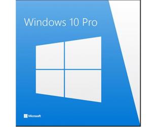 Operacinė sistema Microsoft Windows 10 Pro, ESD