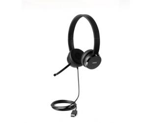 Ausinės Lenovo 100 USB Stereo Headset Microphone, USB 2.0 Type A