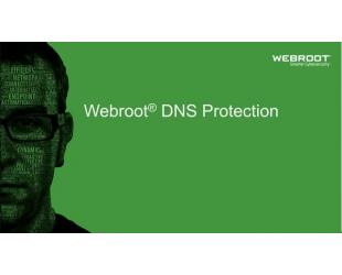Antivirusinė programa Webroot DNS Protection with GSM Console, trukmė 2 metai, licencija 10-99 vartotojams