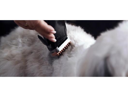 Plaukų kirpimo mašinėlė gyvūnams  MOSER 1230-0079 Rex