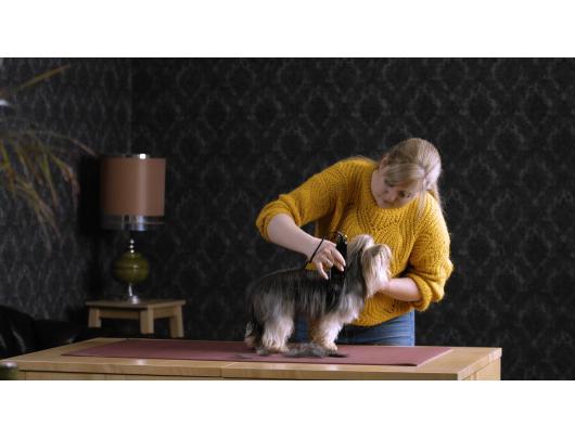 Plaukų kirpimo mašinėlė gyvūnams MOSER 1406-0076