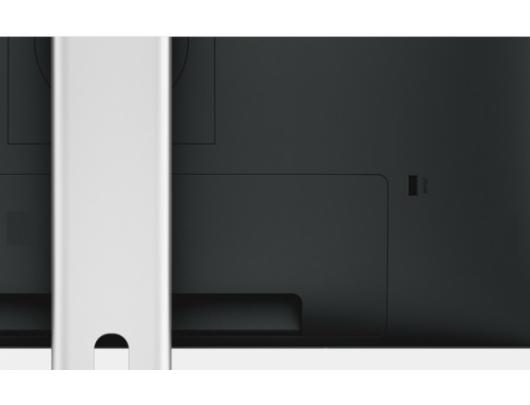 """Monitorius Dell U2415 24"""""""
