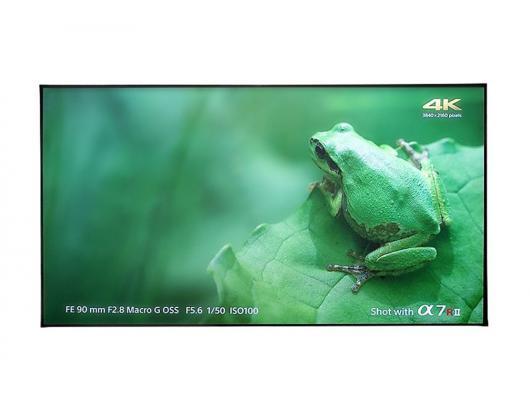 Projektoriaus ekranas Elite Screens AR100H-CLR Projection Screen, Fixed frame, 100''/16:9